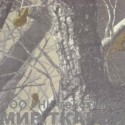 240D PU цв.C78 Серо-бежевый лес